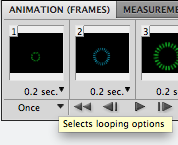 looping options