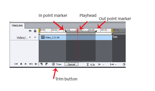 Timeline in editor view.